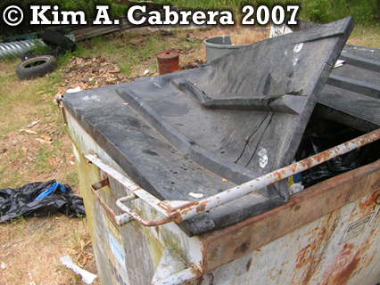 Black bear raided dumpster. Photo copyright by Kim A. Cabrera 2007.