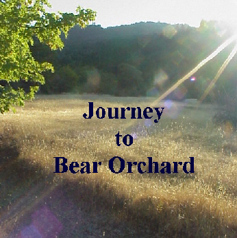 Journey to Bear Orchard